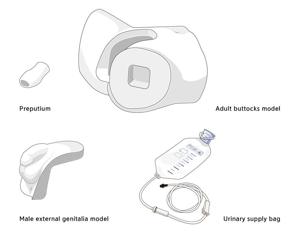 Modulo genitali per CSCM simulatore cateterizzazione vescicale maschile